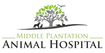 Middle Plantation Animal Hospital